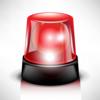 Alarm system avatar