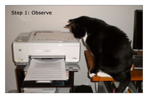 Printer-Problem-1-words