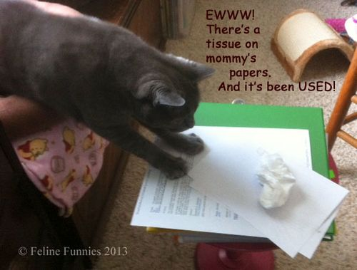 Gracie-and-Tissue-watermark