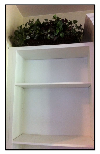 Empty-Shelf-BB1-framed
